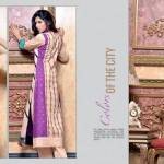 Rujhan Fabric 2014 Winter Dress 5