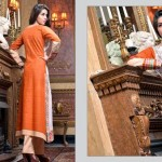 Rujhan Fabric 2014 Winter Dress 9