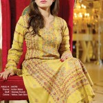 new embroidered dresses by Taana Baana From their Fall Winter Collection 2014