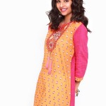 new cotton dresses from fall winter collection launched by vaneeza.