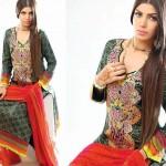 Noor Jahan Linen 2014 Dress 14