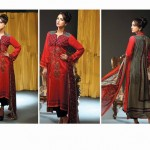 Noor Jahan Linen 2014 Dress 15