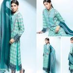 Noor Jahan Linen 2014 Dress 20