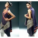 Sania Zara 2014-15 Embroidered Kurti 10