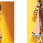 Sania Zara 2014-15 Embroidered Kurti 16
