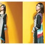 Sania Zara 2014-15 Embroidered Kurti 17