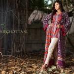 Zainab Chottani 2014-15 Winter Dress 5