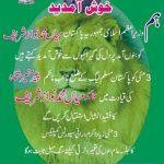 Pir Mehar Ali Shah and Malik Hameed Khan PMLN Jasla Nawaz Sharif and Fazal ul Rehman in Bannu on 3 May 2016