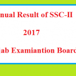 BISEs Matric-SSC Result 2017